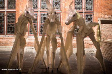 Magic white horses. Paardenhoef getrappel zult u niet horen, als deze mysterieuze witte paarden in het straatbeeld verschijnen